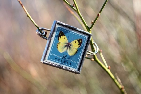 Dzikie Twory - broszka ze znaczkiem pocztowym motyl siarecznik